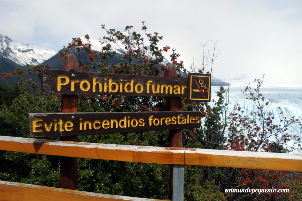 Evite incendios forestales