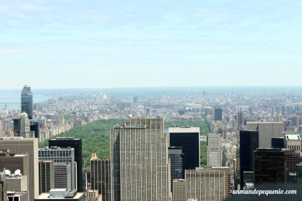 Central Park visto desde el Empire State