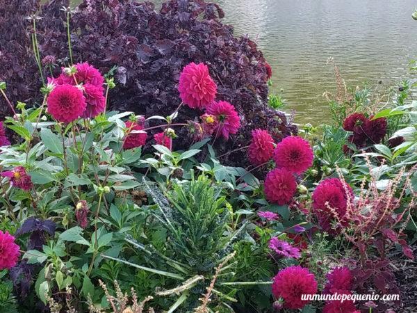 lores coloridas del Parc Floral