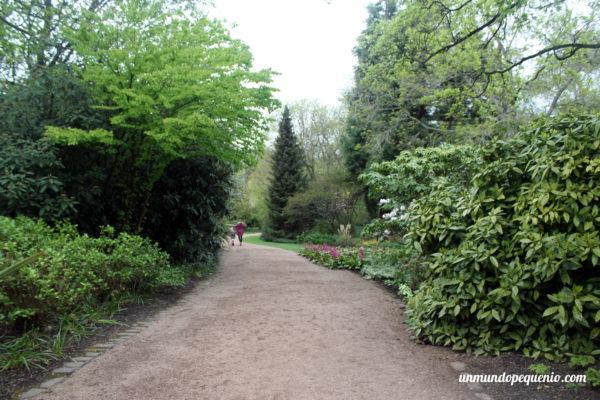 Caminito en el jardín de Holyrood Palace