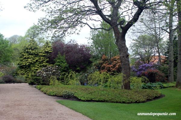 Colores del jardín del Holyrood Palace