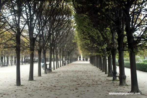 Árboles del Jardin du Palais Royal